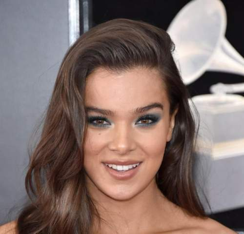 Can someone make a composition about hailee steinfeld's life as a celebrity? ! btw dont use wikipe